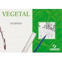 Caja de papel vegetal A-4   250 hojas 90/95 grs.